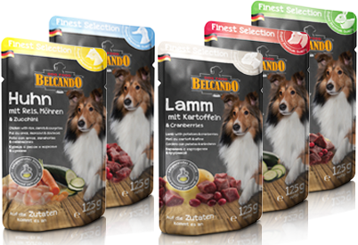 Petfood and Accessories